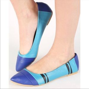 They're Back! Blue Crayon Shoe